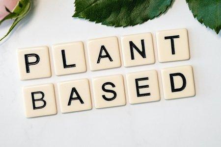 plant based, white and black wooden blocks