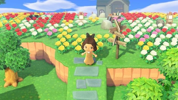 Animal Crossing accessibility