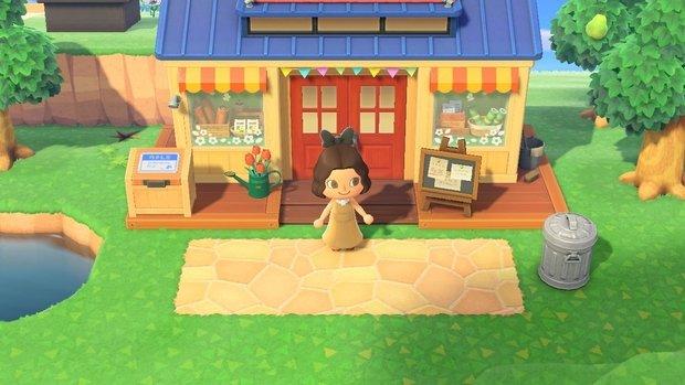 Animal Crossing Nooks Cranny