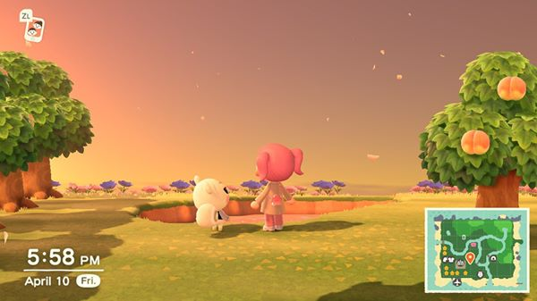 Animal Crossing New Horizons looking over the lake with Marshal the squirrel