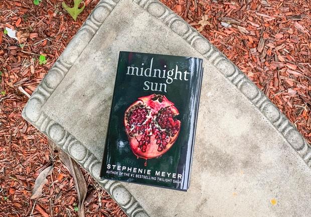 Copy of Midnight Sun on a bench