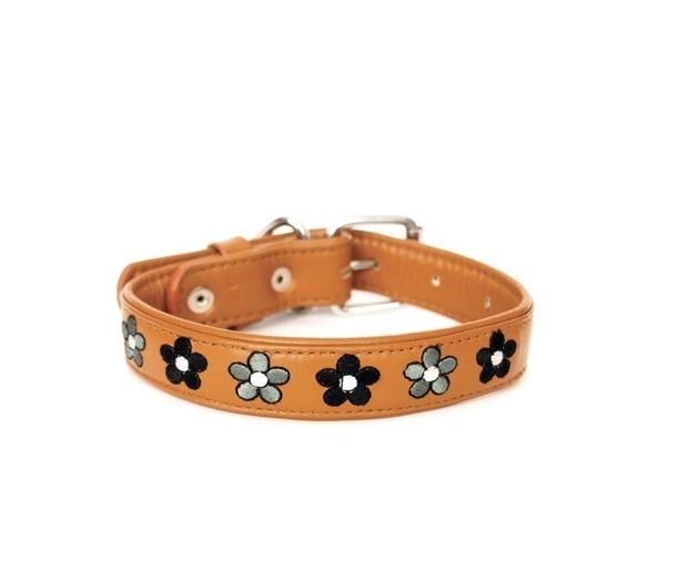 leather-dog-collar