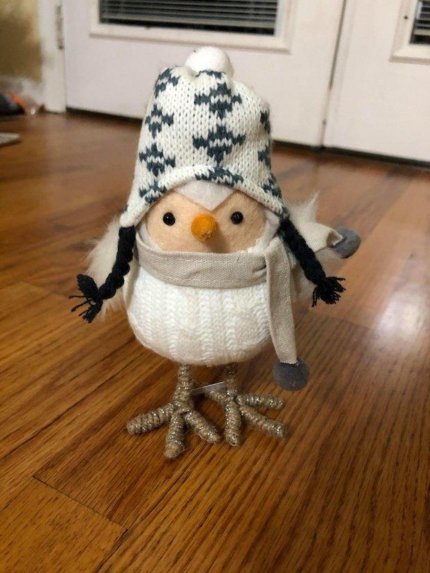 spritz winter bird