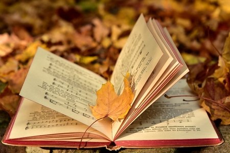 Book of Music in Leaves