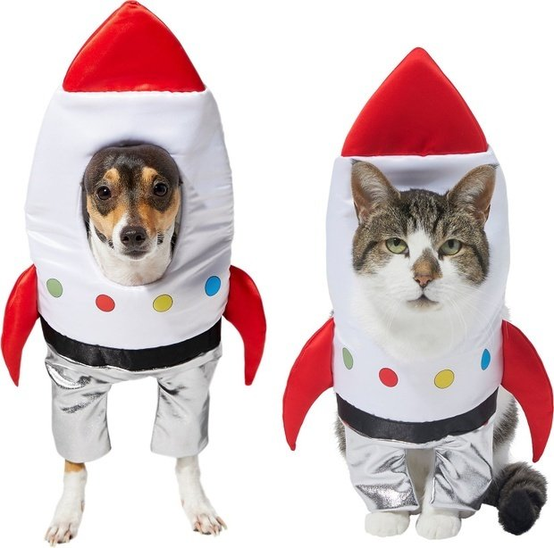 Spaceship dog and cat costume