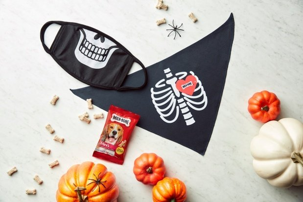 Milk-Bone Halloween Mask and Bandana Set